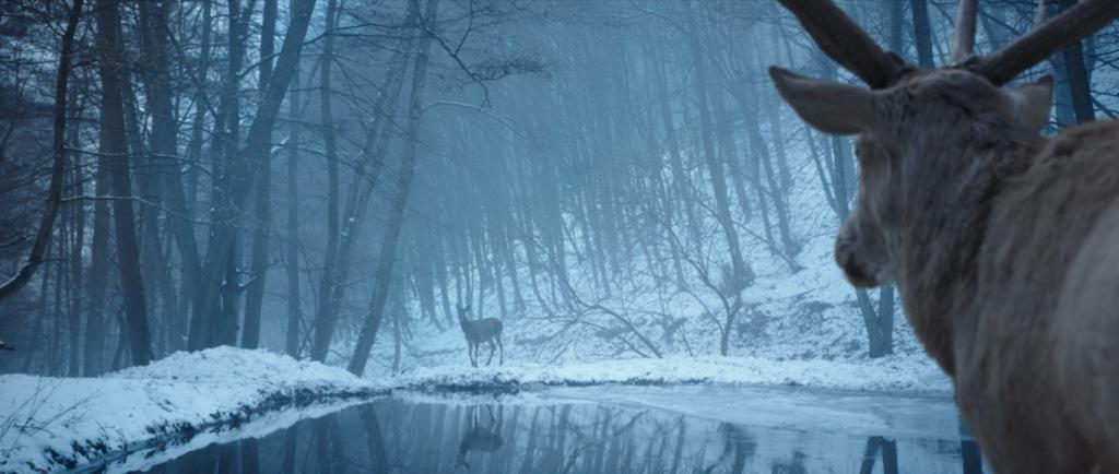 Fotograma de En cuerpo y alma. Dos ciervos se miran, separados por un lago en un paisaje de bosque nevado