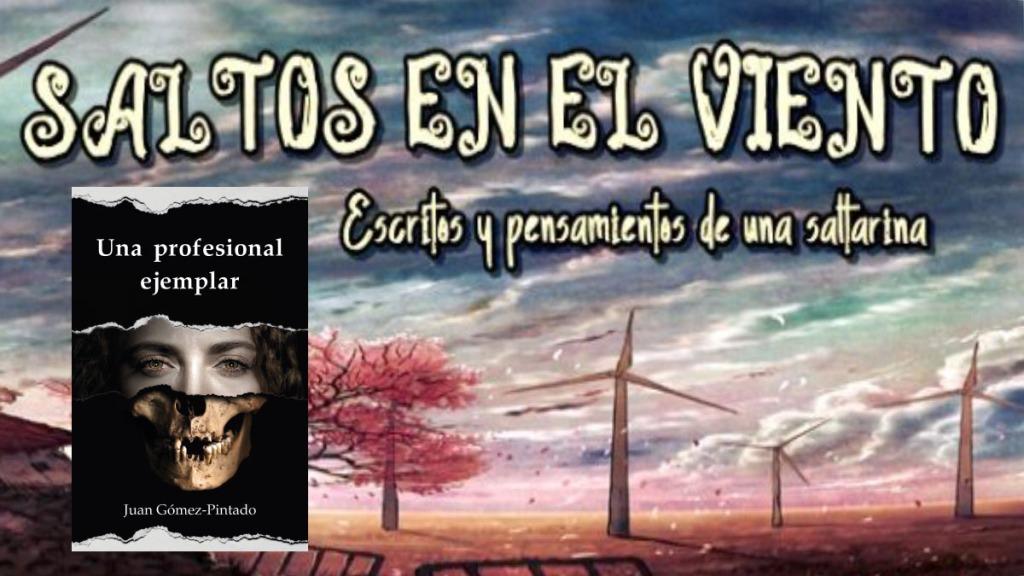 Montaje con las portadas del blog Saltos en el viento y la novela Una profesional ejemplar